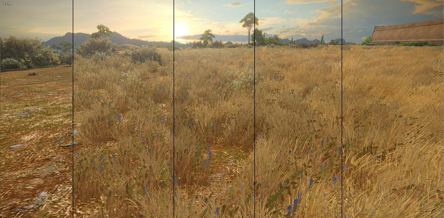 Grass quality comparison